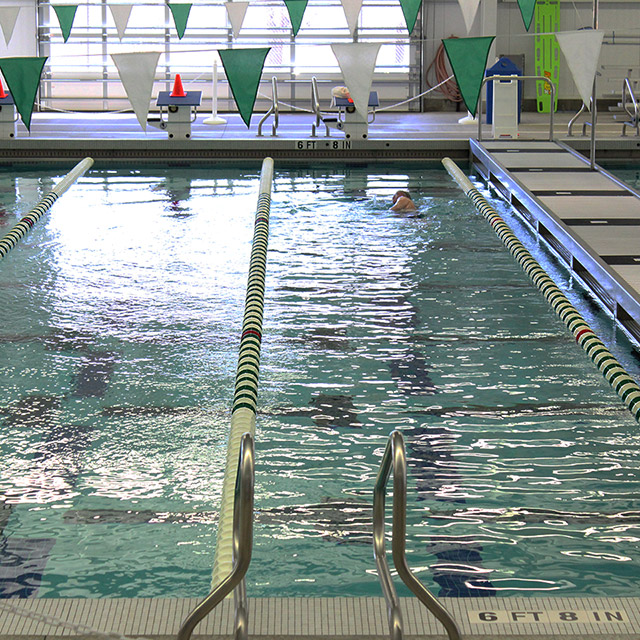 Adult swimming laps